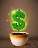 Δέντρο σημαδιών δολαρίων που βγαίνει από flowerpot Στοκ φωτογραφία με δικαίωμα ελεύθερης χρήσης
