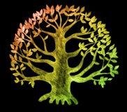 δέντρο σκίτσων ζωής ελεύθερη απεικόνιση δικαιώματος