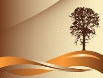 δέντρο σκιαγραφιών ανασκό&p Στοκ Φωτογραφία