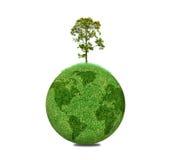 Δέντρο στον κόσμο σφαιρών Στοκ φωτογραφίες με δικαίωμα ελεύθερης χρήσης