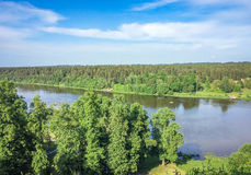 Δέντρο στον ποταμό στοκ φωτογραφίες με δικαίωμα ελεύθερης χρήσης