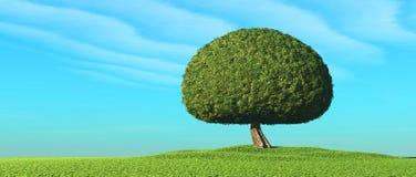 Δέντρο στον τομέα ελεύθερη απεικόνιση δικαιώματος