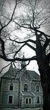 Δέντρο στο κέντρο της πόλης Οττάβα φθινοπώρου Στοκ Φωτογραφίες
