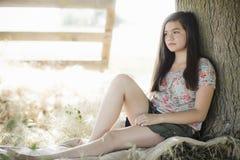 δέντρο συνεδρίασης κορι& στοκ φωτογραφίες
