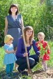 Δέντρο συνόλων γυναικών και κοριτσακιών Στοκ εικόνα με δικαίωμα ελεύθερης χρήσης