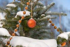 δέντρο σφαιρών γουνών χρώματ Στοκ φωτογραφία με δικαίωμα ελεύθερης χρήσης