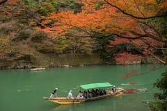 Δέντρο σφενδάμνου σε Arashiyama Στοκ Φωτογραφίες