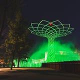 Δέντρο της ζωής το βράδυ σε EXPO 2015 στο Μιλάνο, Ιταλία Στοκ Εικόνες