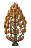 δέντρο της Κολωνίας Γερμ&a Στοκ φωτογραφία με δικαίωμα ελεύθερης χρήσης