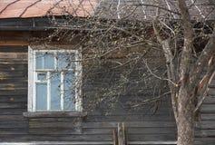 Δέντρο της Apple ενάντια στο παράθυρο του παλαιού ξύλινου σπιτιού την άνοιξη Στοκ Εικόνες