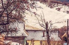 Δέντρο της Apple και ξύλινα σπίτια σε Vlkolinec, Σλοβακία, κόκκινο φίλτρο Στοκ Φωτογραφίες