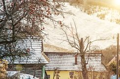 Δέντρο της Apple και ξύλινα σπίτια στο χωριό Vlkolinec, Σλοβακία, ήλιος Στοκ εικόνα με δικαίωμα ελεύθερης χρήσης
