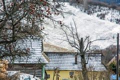 Δέντρο της Apple και ξύλινα σπίτια στο χωριό Vlkolinec, Σλοβακία, Une Στοκ Φωτογραφία