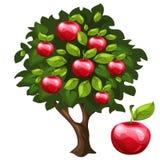 Δέντρο της Apple με τα ώριμα φρούτα στο ύφος κινούμενων σχεδίων Στοκ φωτογραφία με δικαίωμα ελεύθερης χρήσης