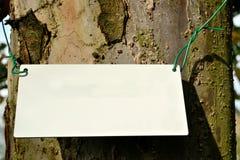 Δέντρο της Apple με την ασπίδα Στοκ εικόνα με δικαίωμα ελεύθερης χρήσης