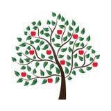 Δέντρο της Apple που γεμίζουν με τα ώριμα φρούτα Στοκ Εικόνες
