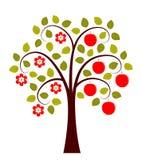 Δέντρο της Apple σε δύο εποχές απεικόνιση αποθεμάτων