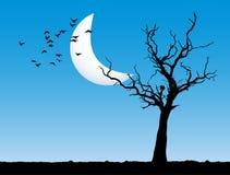 δέντρο τοπίων βραδιού απεικόνιση αποθεμάτων