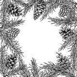 Δέντρο του FIR και συρμένο διανυσματικό χέρι τετραγωνικό πλαίσιο κώνων πεύκων για το χειμώνα Στοκ φωτογραφίες με δικαίωμα ελεύθερης χρήσης