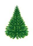 Δέντρο του FIR Στοκ Εικόνα