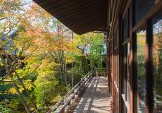 Δέντρο φθινοπώρου στον ιαπωνικό κήπο Στοκ Εικόνες