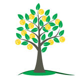 Δέντρο χρημάτων με τα χρυσά νομίσματα ελεύθερη απεικόνιση δικαιώματος