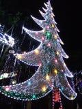 Δέντρο Χριστού Στοκ Εικόνες