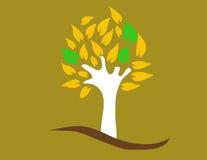 δέντρο χρώματος Στοκ Εικόνες