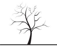Δέντρο χωρίς φύλλα ελεύθερη απεικόνιση δικαιώματος