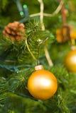 δέντρο Χ MAS Στοκ φωτογραφία με δικαίωμα ελεύθερης χρήσης