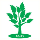 Δέντρο Eco με τα πράσινα φύλλα Στοκ Φωτογραφίες