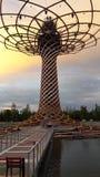 Δέντρο expà ² Μιλάνο 2015 ζωής Στοκ Φωτογραφίες