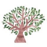 Δέντρο Watercolor με το πράσινο φύλλο που απομονώνεται στο άσπρο υπόβαθρο Στοκ φωτογραφία με δικαίωμα ελεύθερης χρήσης