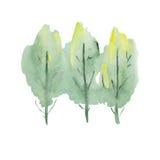 Δέντρο Watercolor Στοκ φωτογραφία με δικαίωμα ελεύθερης χρήσης
