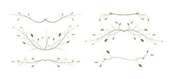 Δέντρων κλάδων κλαδίσκων σχεδιαστών φυσικοί κλάδοι φυλλώματος τέχνης διαφορετικοί, ύφος s watercolor στοιχείων διαιρετών σελίδων  απεικόνιση αποθεμάτων
