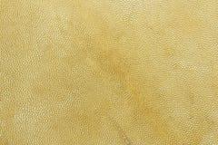 δέρμα αιγών Στοκ φωτογραφία με δικαίωμα ελεύθερης χρήσης