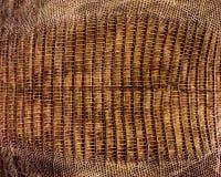 Δέρμα κροκοδείλων στοκ φωτογραφία με δικαίωμα ελεύθερης χρήσης