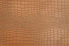 Δέρμα του σχεδίου σύστασης κροκοδείλων για το υπόβαθρο Στοκ Φωτογραφίες