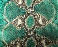 Δέρμα φιδιών Στοκ εικόνα με δικαίωμα ελεύθερης χρήσης