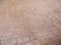 δέρμα φυσικό Στοκ εικόνα με δικαίωμα ελεύθερης χρήσης