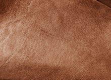 δέρμα Στοκ εικόνες με δικαίωμα ελεύθερης χρήσης