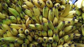 Δέσμες και δέσμες των μπανανών απόθεμα βίντεο