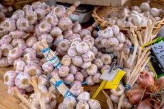 Δέσμες σκόρδου Στοκ εικόνες με δικαίωμα ελεύθερης χρήσης