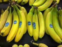 Δέσμες των μπανανών για την πώληση Στοκ φωτογραφία με δικαίωμα ελεύθερης χρήσης