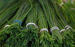 Δέσμες των φρέσκων κρεμμυδιών κρεμμυδιών άνοιξη πράσινων στοκ φωτογραφία