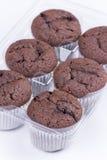 Δέσμη καφετιά muffins σοκολάτας πέρα από το άσπρο υπόβαθρο Στοκ φωτογραφία με δικαίωμα ελεύθερης χρήσης