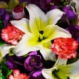 Δέσμη λουλουδιών στενή στοκ εικόνες