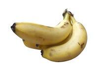 Δέσμη 4 μπανανών στοκ εικόνα