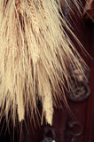 Δέσμη σίτου στοκ φωτογραφία
