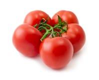Δέσμη της κόκκινης ντομάτας πέρα από το άσπρο υπόβαθρο Στοκ φωτογραφίες με δικαίωμα ελεύθερης χρήσης